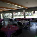 bridal-shower_7258