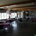 bridal-shower_7263